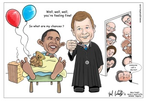 obamacare-supreme-court-ruling-decision-cartoon3